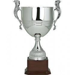 Trofeo 63091