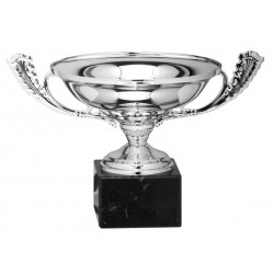 Copa 42-31